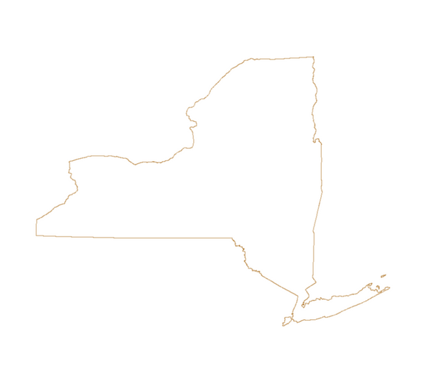 State of New York outline vector