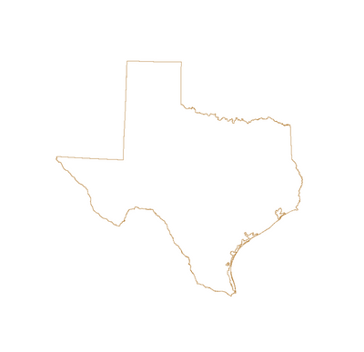 State of Texas outline vector