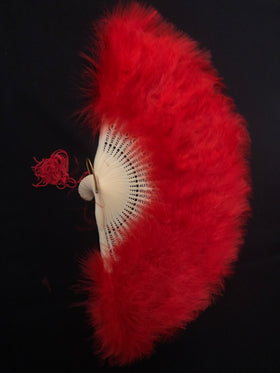 Fan Red Feather
