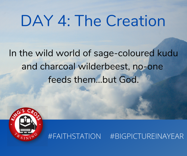 DAY FOUR - BIG PICTURE IN A YEAR - THE CREATION
