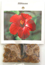 Load image into Gallery viewer, Red Hawaiian Hibiscus Cutting