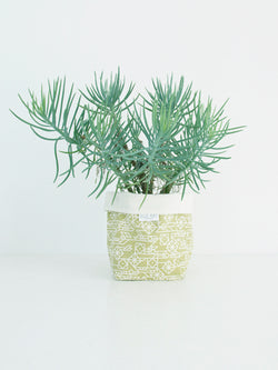 Soft Pot - various designs