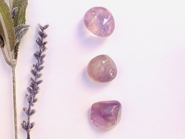 Amethyst Tumbled Stone - Pack of 3