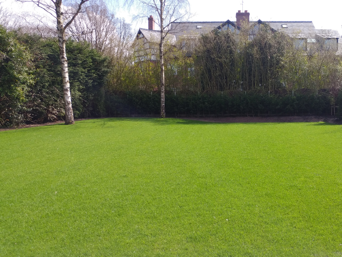 The benefits of lawn fertiliser