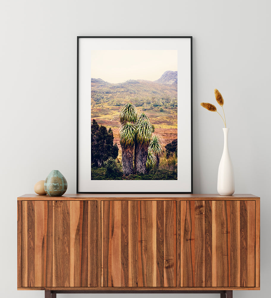 Cradle Mountain Photographic Print of the beautiful Pandani plant with the Cradle Valley wilderness in the background shot in Cradle Mountain National Park Tasmania by Millie Brown