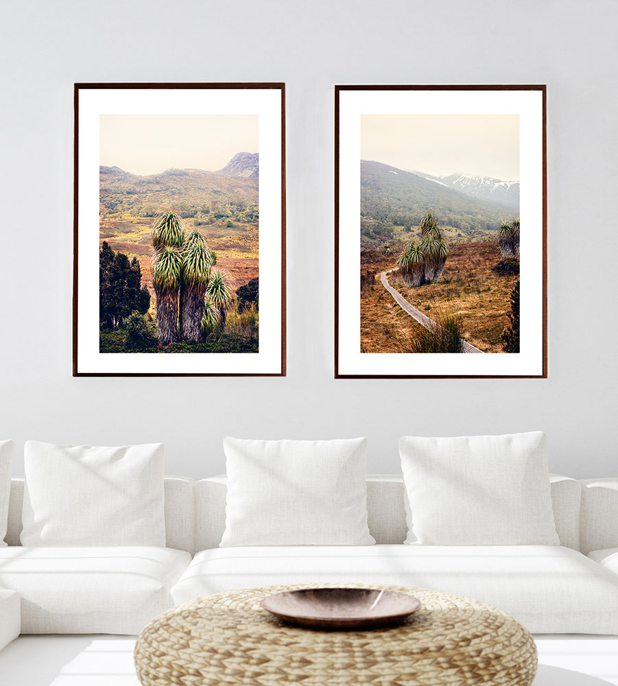 Tasmania's cradle mountain wilderness featuring the pandani trees and snow capped mountains in fine art series of prints by Millie Brown