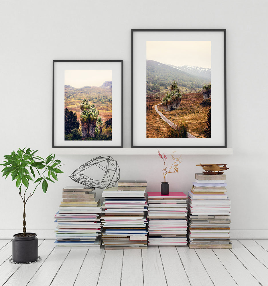 Cradle Mountain tasmania featuring the beautiful Pandani trees and the wilderness beyond in a fine art print series by Millie Brown