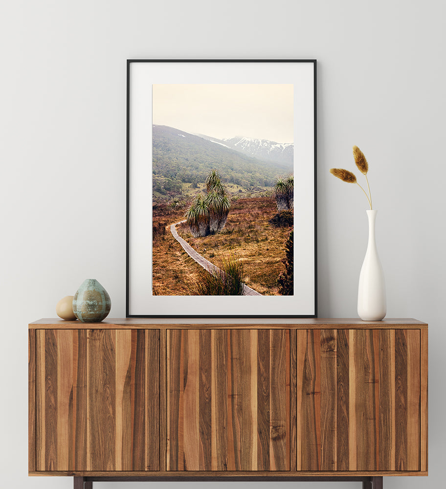 Tasmania cradle mountain and a cluster of beautiful pandani sit alongside a walking trail leading to the snow capped mountains beyond. FIne art print by Millie Brown