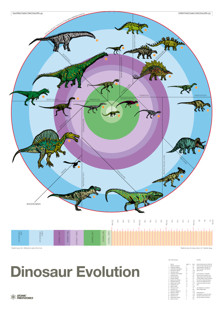 Dinosaur Evolution print