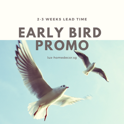 Early bird promotion!