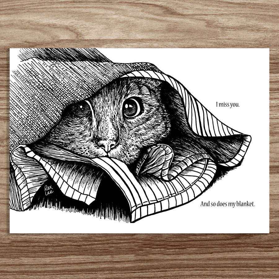 Classical Cats (Postcard Set of 5 - A5 size)