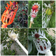Plastic Fruit Picker Catcher - Gadgetir