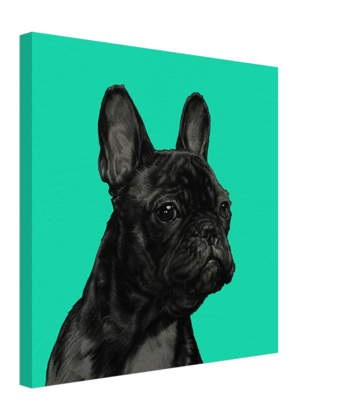 French Bulldog on Canvas