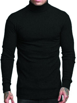 Men's Solid Color Turtleneck Sweater