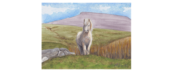 Pen Y Fan With Wild Pony