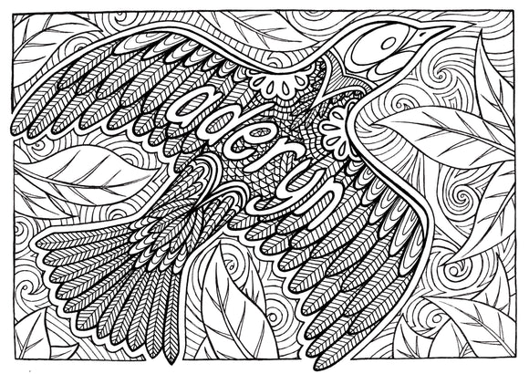 Aderyn - Welsh Words Colouring Sheet - Digital Download