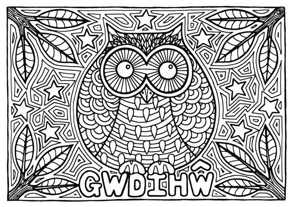 Gwdihw - Welsh Words Colouring Sheet - Digital Download