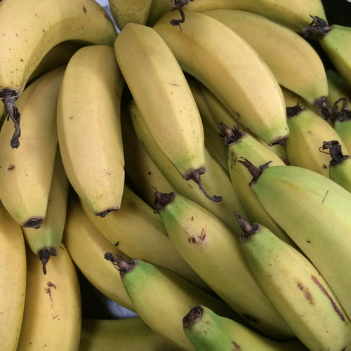 organic cavendish bananas available for pick up or home delivery in Brisbane