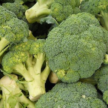 greens broccoli organic vegetables brisbane