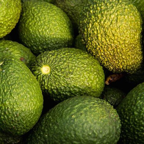 avocados organic fruits and vegetables brisbane