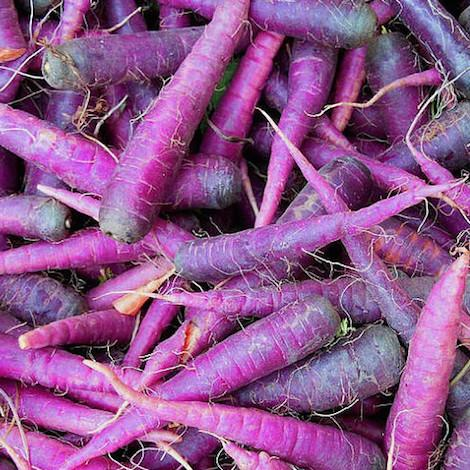 Spray Free purple carrots ready for collection from pick up points around Brisbane