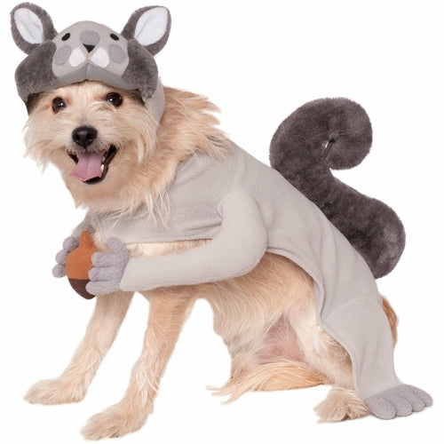 Squirrel Pet Costume - Thorito's Closet