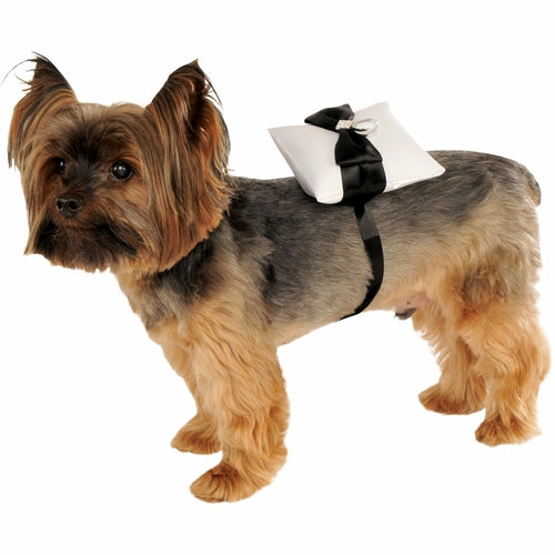 Ring Bearer Pillow Wedding Pet Costume - Thorito's Closet