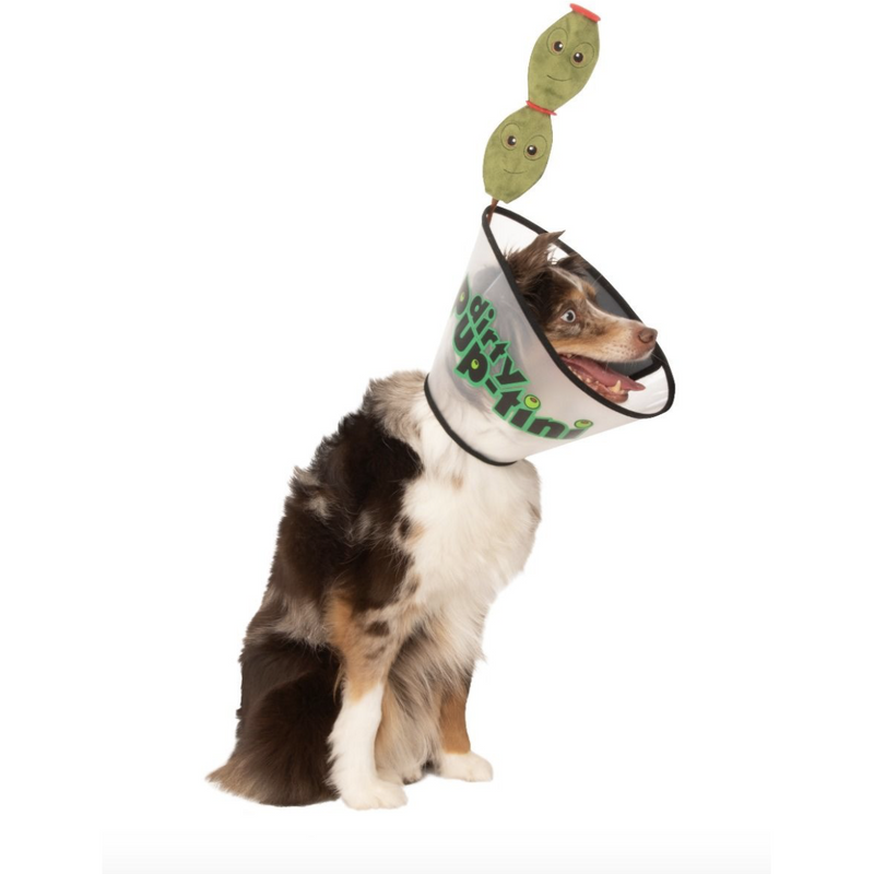 Dirty Puptini Martini Pet Costume - Thorito's Closet
