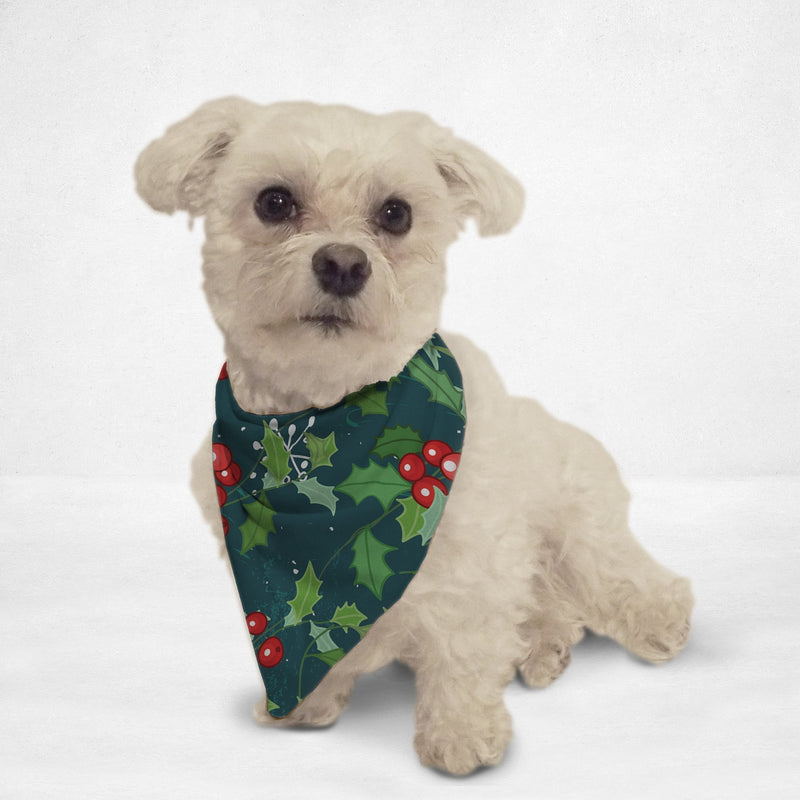 Christmas Holly Cat & Dog Bandana - Thorito's Closet