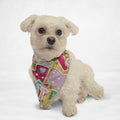 Christmas Sweets Cat & Dog Bandana - Thorito's Closet