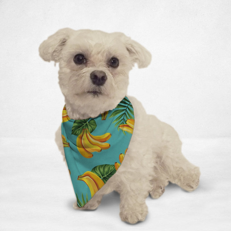 Going Bananas Cat & Dog Bandana - Thorito's Closet