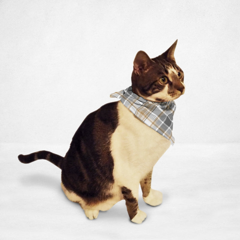 Golden Checkered Cat & Dog Bandana - Thorito's Closet