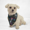 Mariachi Skulls Cat & Dog Bandana - Thorito's Closet