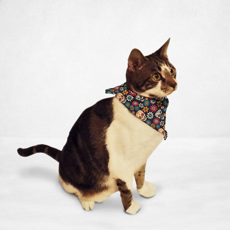 Colorful Sugar Skull Cat & Dog Bandana - Thorito's Closet