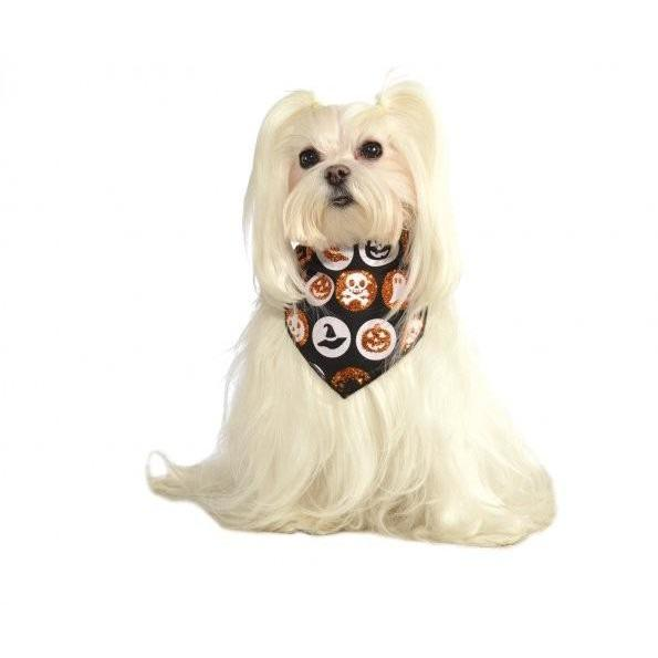 Glitter Halloween Pet Bandana - Thorito's Closet