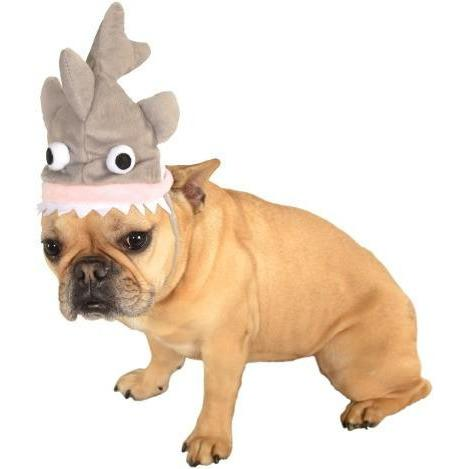 Shark Pet Hat - Thorito's Closet