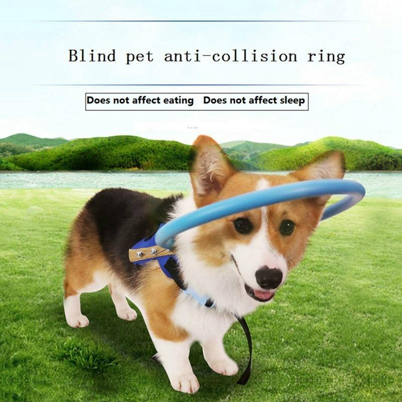 Blind Pet Anti-Collision Ring Collar Safe Halo Harness For Blind Dogs - Thorito's Closet