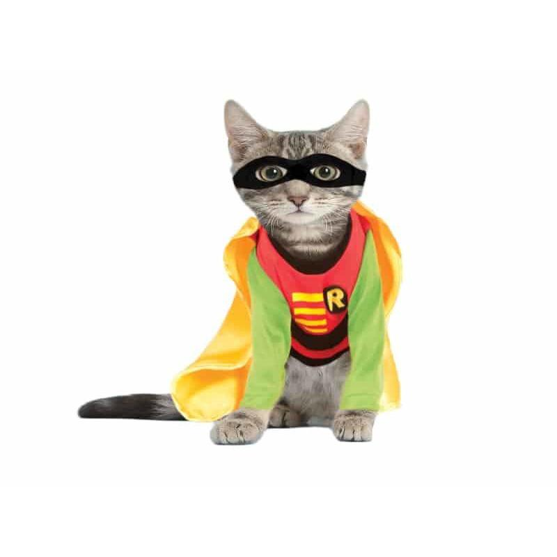 Robin Cat Costume - Thorito's Closet
