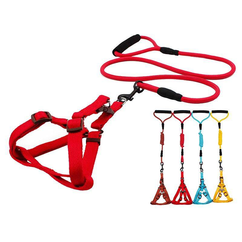 Nylon Pet Leash Lead & Harness Combo for Medium Large Dogs Cats Pets - Thorito's Closet