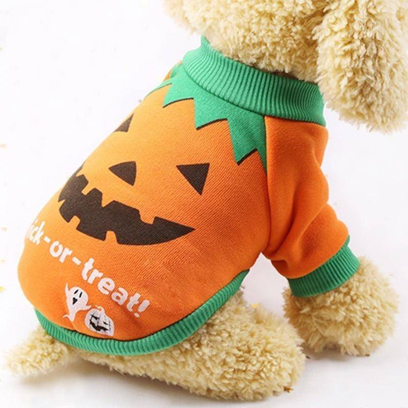 Pumpkin Witch Long Sleeve Shirt Halloween Costume For Pets Cats Dogs (XS-XXL) - Thorito's Closet