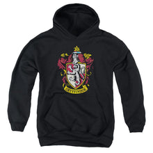 Load image into Gallery viewer, Harry Potter - Gryffindor Crest Youth Pull Over Hoodie