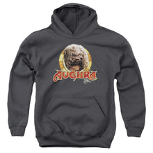 Load image into Gallery viewer, Dark Crystal - Aughra Circle Youth Pull Over Hoodie Youth Pull Over Hoodie ApparelPop!