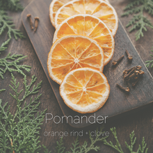 Load image into Gallery viewer, Pomander : orange rind + clove