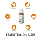 AE Naturals jasmine Essential Oil 30ml