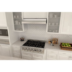 ZLINE 30 in.  Under Cabinet Range Hood in Stainless Steel (627-30)