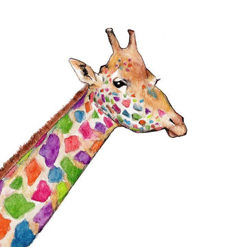 Colorful mulit-colored giraffe