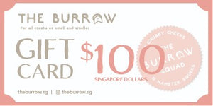 The Burrow Gift Card $100