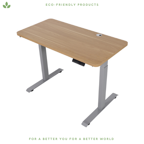 Bamboo Electric Standing Desk