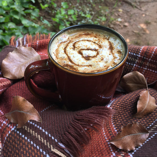 Golden Cocoa PSL With Terra Powders Healthy Chocolate Sauce Swirl Topping