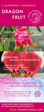 Load image into Gallery viewer, Dragon Fruit Infographic By Terra Powders Freeze-Dried Healthy Clean Food Power